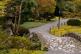 Japanese Garden Design Delights